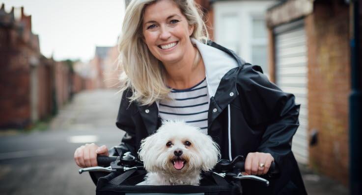 Hund sitter i cykelkorg.