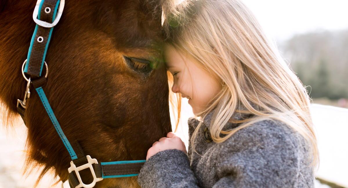 hur ofta vaccinera häst mot stelkramp
